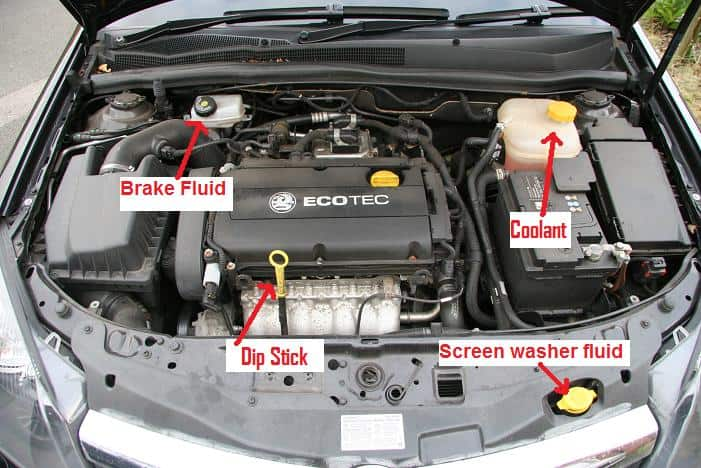 car bonnet diagram - 28 images - charming car bonnet diagram images ...